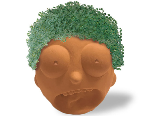 chia pet head