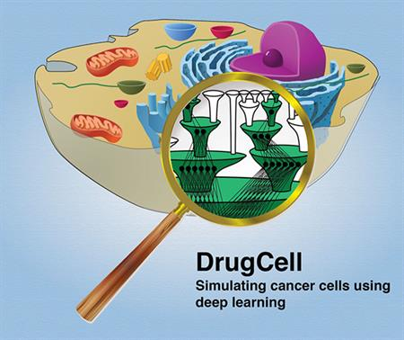 DrugCell