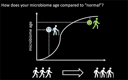Skin microbiome and aging graphic