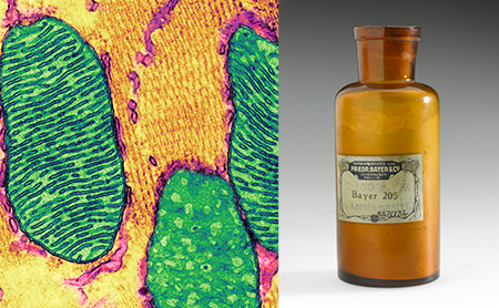 Mitochondria and old Suramin bottle